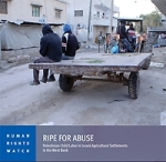 Palestine child labour