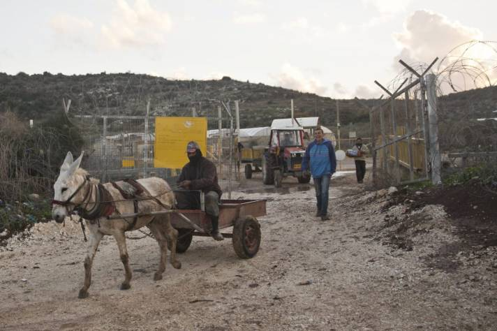 Palestinians crossing into Israel for agricultural work.Credit: Tomer Appelbaum [Haaretz]